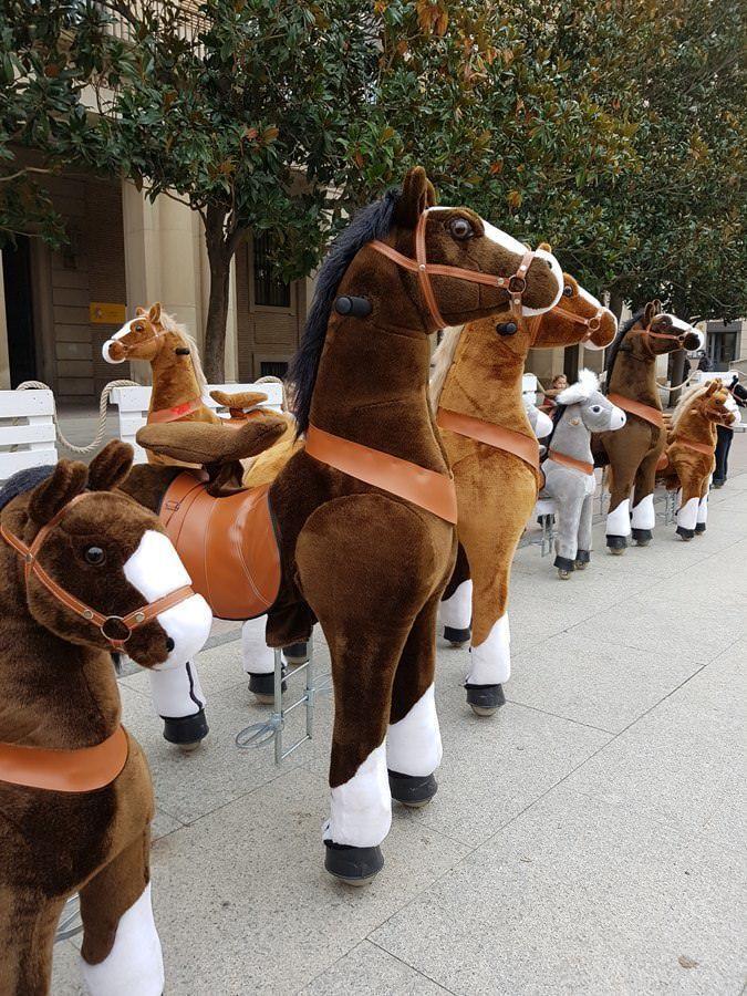 Ponys ecológicos